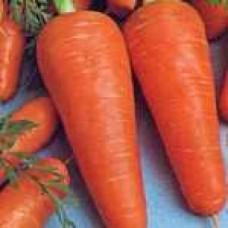 Морковь Шантанэ Курода  (500г) N.W.BIO