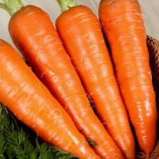Морковь Медовая Сказка 5г АБЦ