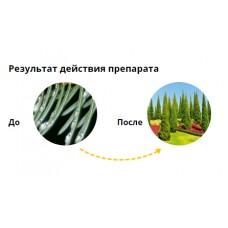 Пиноцид фл 10мл Незаменимый препарат от комплекса вредителей на хвойных растениях.(80шт)Авг Новинка