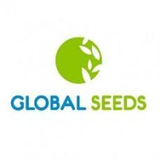 Global Seeds