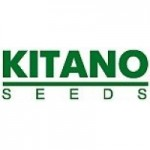 Kitano Seeds