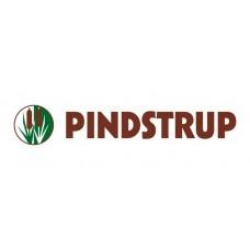 PINDSTRUP