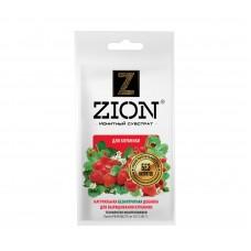 Удобрение Цион (Zion) для клубники 30г (300шт)