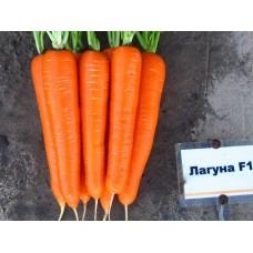 Морковь Лагуна F1 (500шт) з/п N
